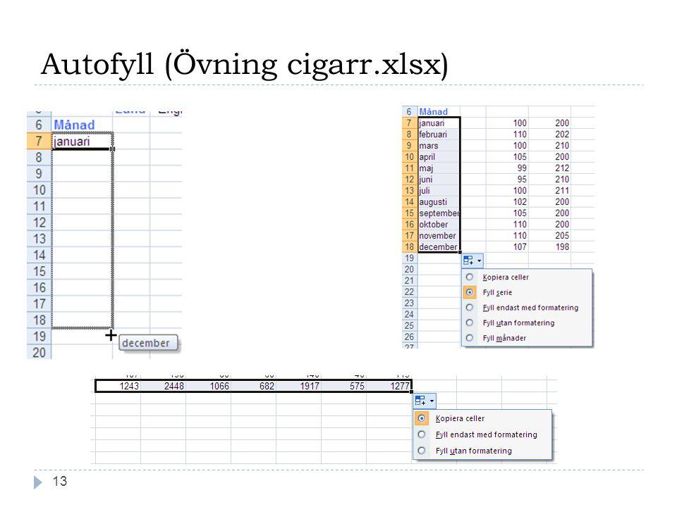Autofyll (Övning cigarr.xlsx) 13