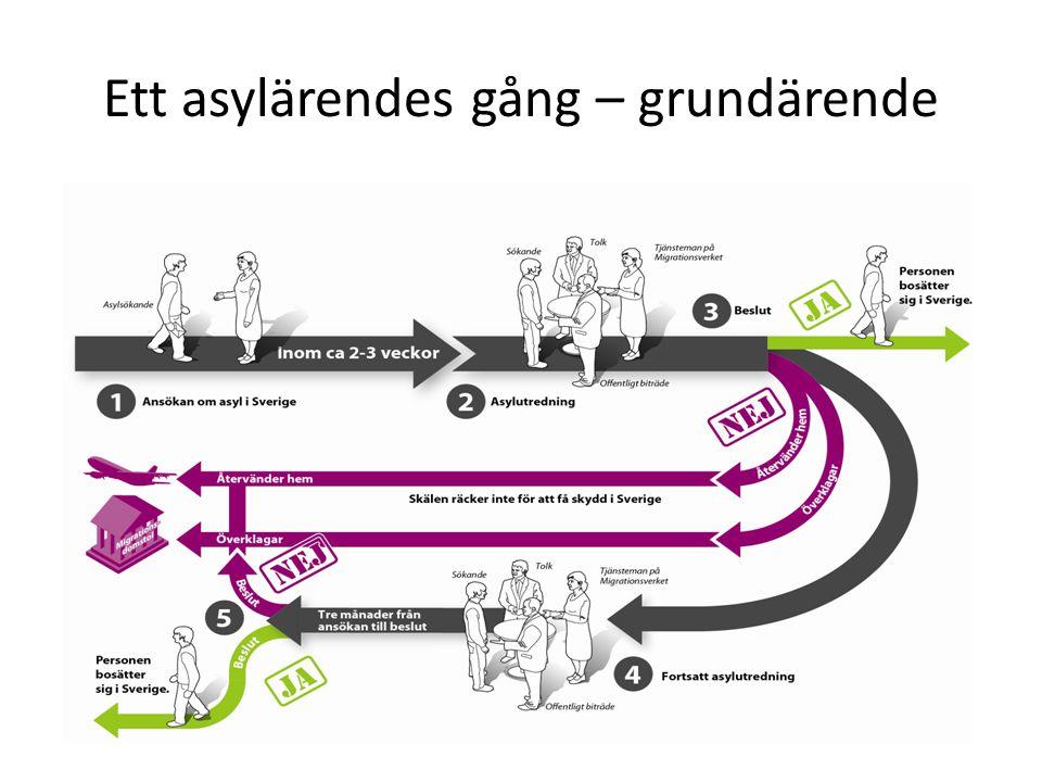 Ett asylärendes gång – grundärende