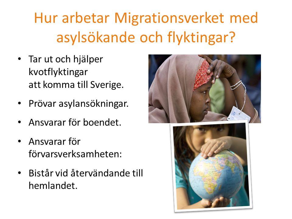 Hur arbetar Migrationsverket med asylsökande och flyktingar? Tar ut och hjälper kvotflyktingar att komma till Sverige. Prövar asylansökningar. Ansvara