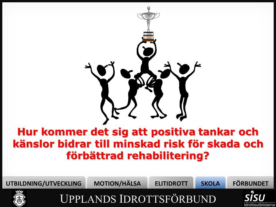 Bild från: http://www.aftonbladet.se/sportbladet/friidrott/article1577841.ab Kajsa Bergqvist Total hälsenereptur 14 Juli 2004, världsmästare 8 augusti 2005