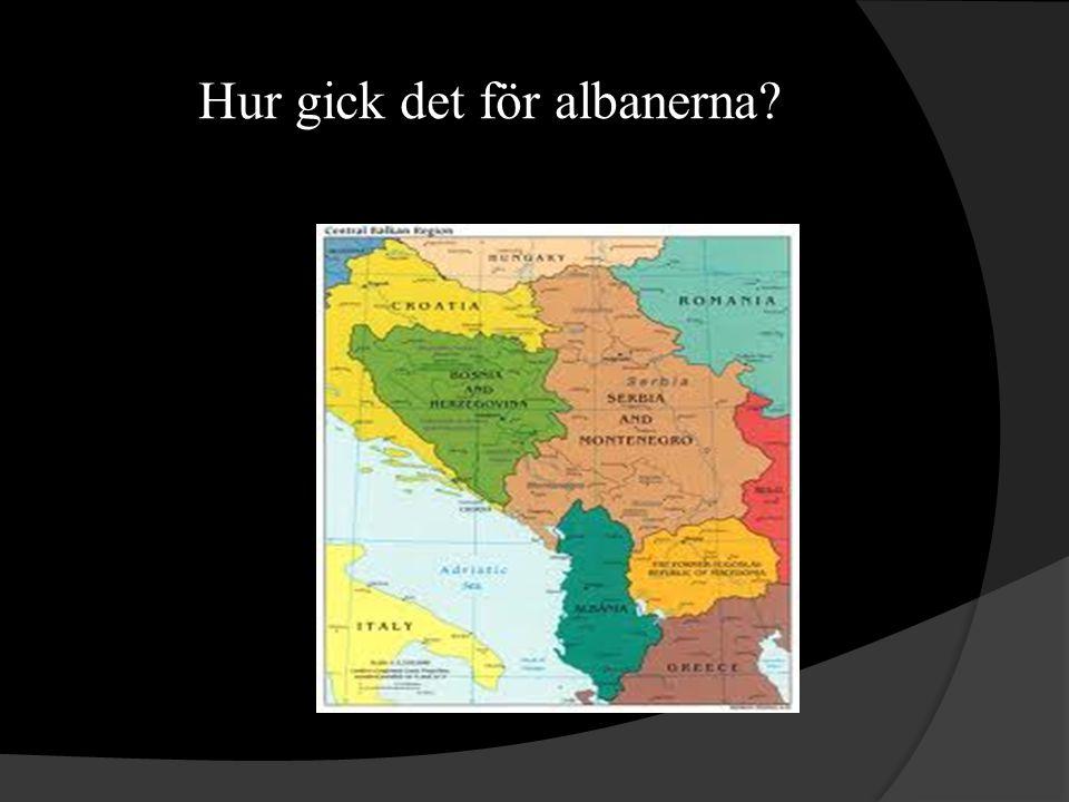 Hur gick det för albanerna?