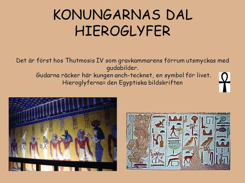KONUNGARNAS DAL HIEROGLYFER Det är först hos Thutmosis IV som gravkammarens förrum utsmyckas med gudabilder. Gudarna räcker här kungen anch-tecknet, e