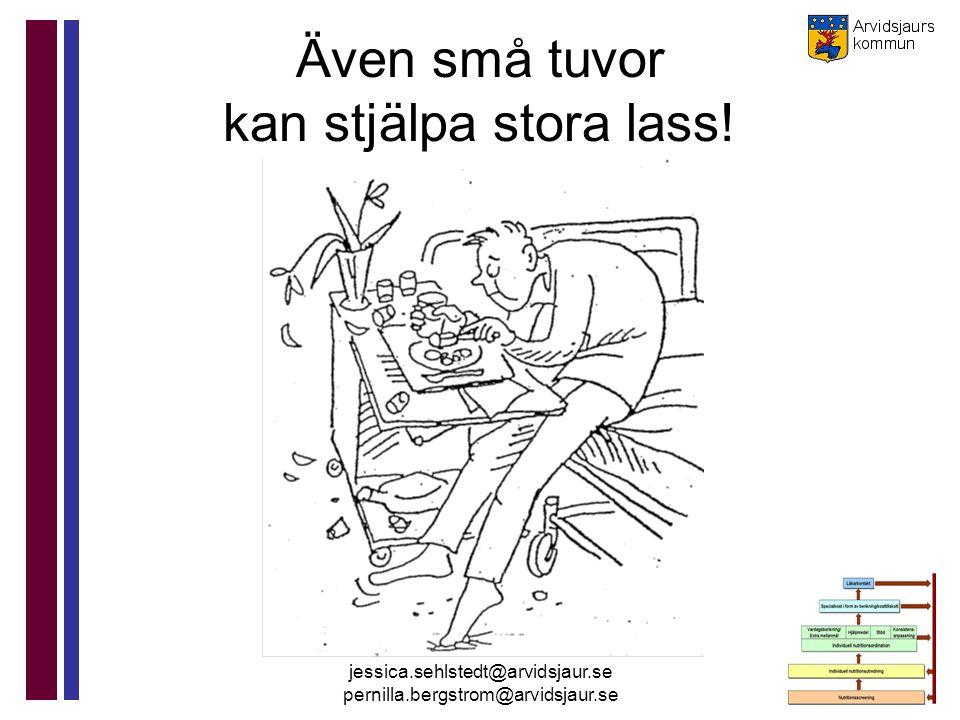 jessica.sehlstedt@arvidsjaur.se pernilla.bergstrom@arvidsjaur.se Även små tuvor kan stjälpa stora lass!