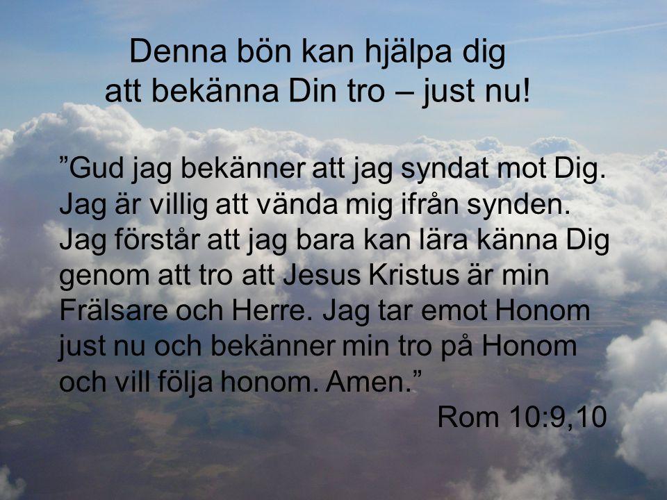 """Denna bön kan hjälpa dig att bekänna Din tro – just nu! """"Gud jag bekänner att jag syndat mot Dig. Jag är villig att vända mig ifrån synden. Jag förstå"""