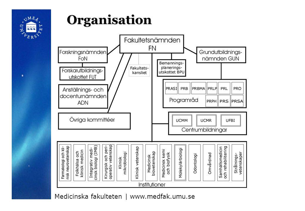 Organisation Medicinska fakulteten | www.medfak.umu.se