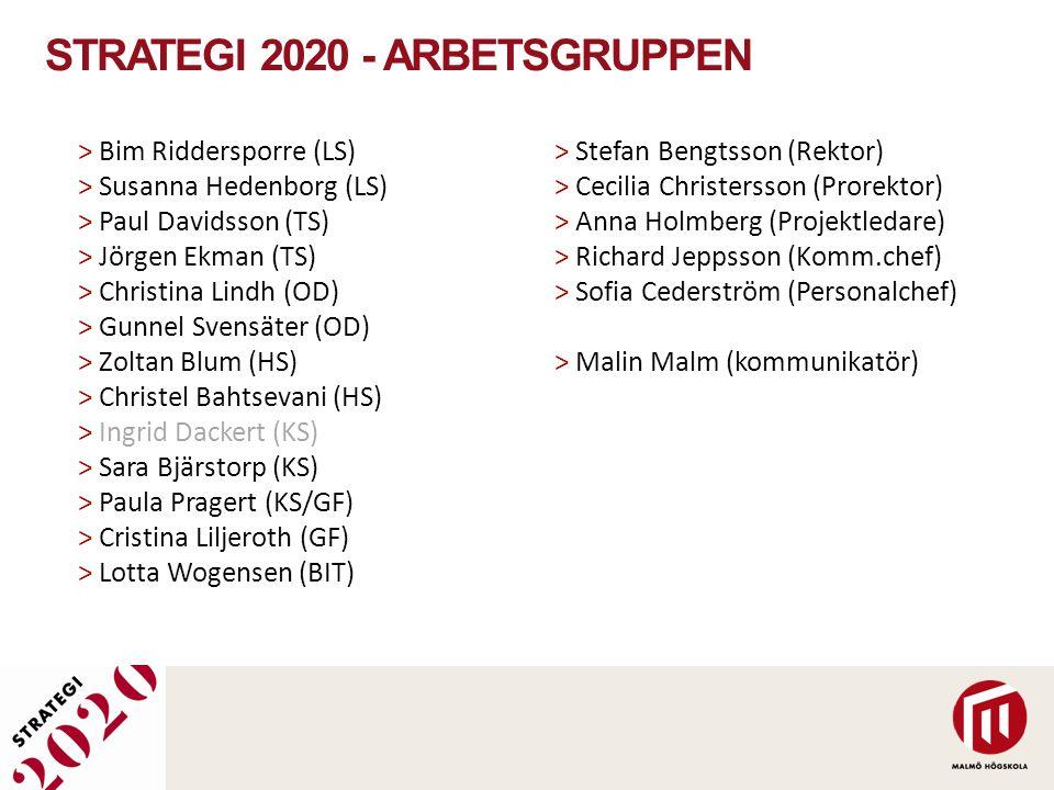 STRATEGI 2020 - ARBETSGRUPPEN > Bim Riddersporre (LS) > Susanna Hedenborg (LS) > Paul Davidsson (TS) > Jörgen Ekman (TS) > Christina Lindh (OD) > Gunn