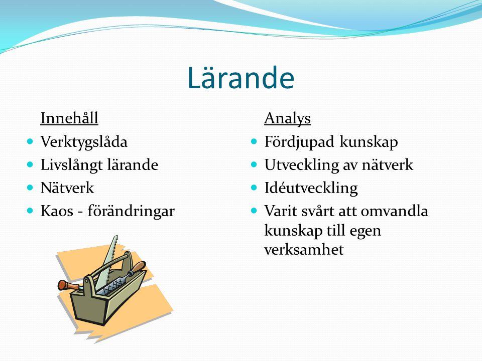 Lärande Innehåll Verktygslåda Livslångt lärande Nätverk Kaos - förändringar Analys Fördjupad kunskap Utveckling av nätverk Idéutveckling Varit svårt att omvandla kunskap till egen verksamhet