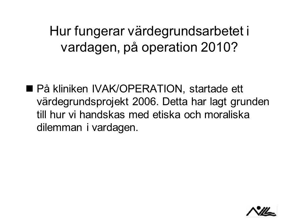 Hur fungerar värdegrundsarbetet i vardagen, på operation 2010.