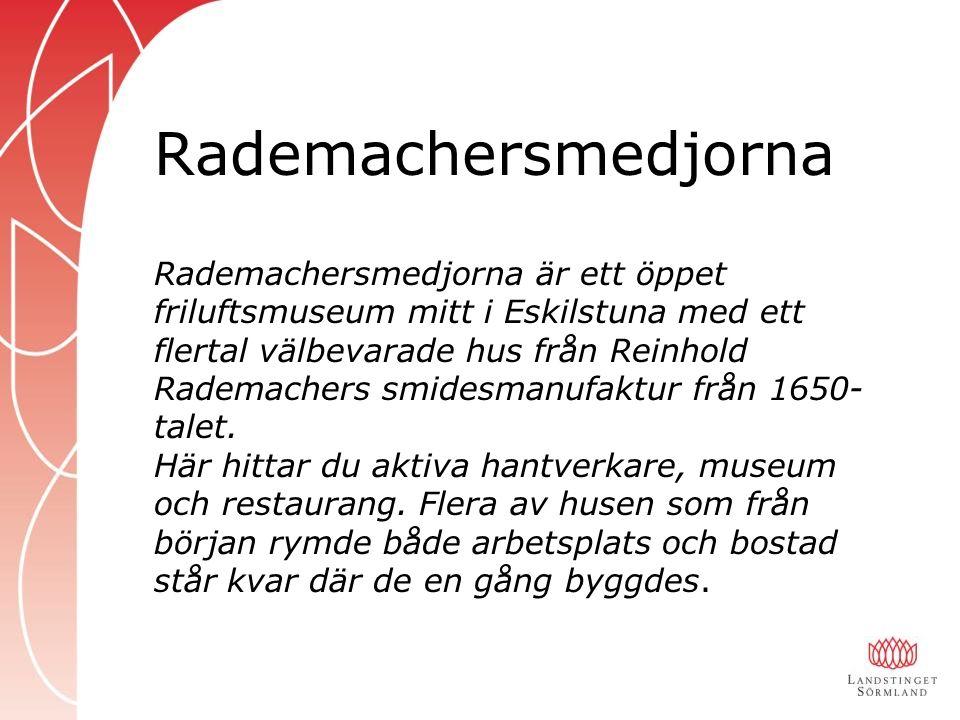 Rademachersmedjorna är ett öppet friluftsmuseum mitt i Eskilstuna med ett flertal välbevarade hus från Reinhold Rademachers smidesmanufaktur från 1650- talet.
