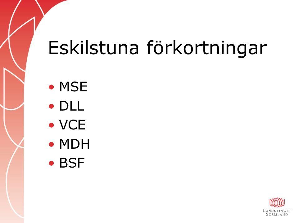 Eskilstuna förkortningar MSE DLL VCE MDH BSF