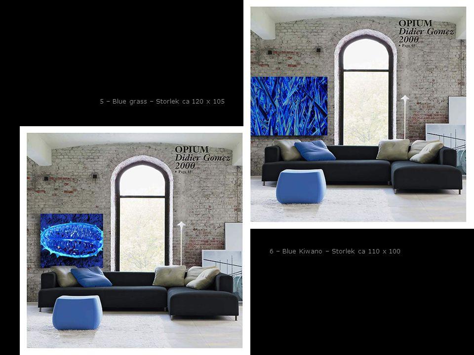 5 – Blue grass – Storlek ca 120 x 105 6 – Blue Kiwano – Storlek ca 110 x 100