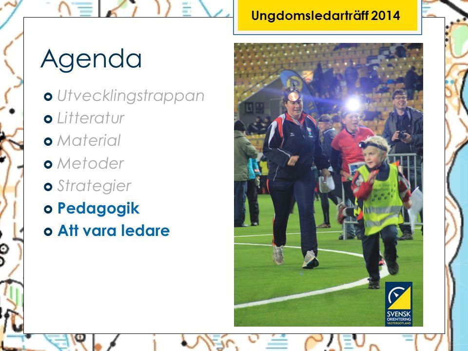 Ungdomsledarträff 2014 Agenda  Utvecklingstrappan  Litteratur  Material  Metoder  Strategier  Pedagogik  Att vara ledare