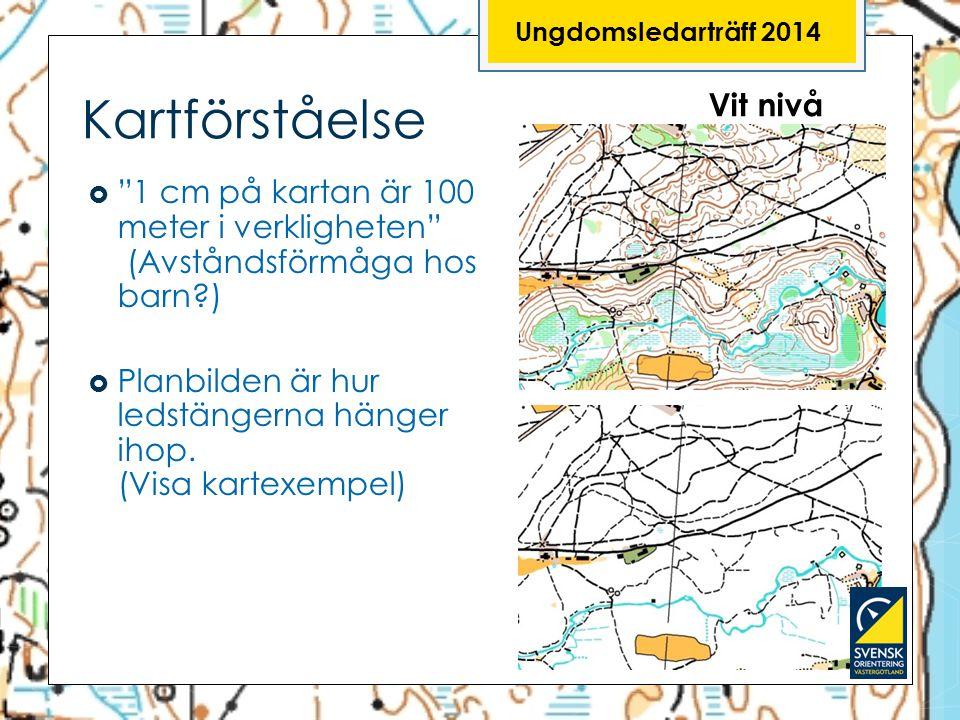"""Ungdomsledarträff 2014 Kartförståelse  """"1 cm på kartan är 100 meter i verkligheten"""" (Avståndsförmåga hos barn?)  Planbilden är hur ledstängerna häng"""