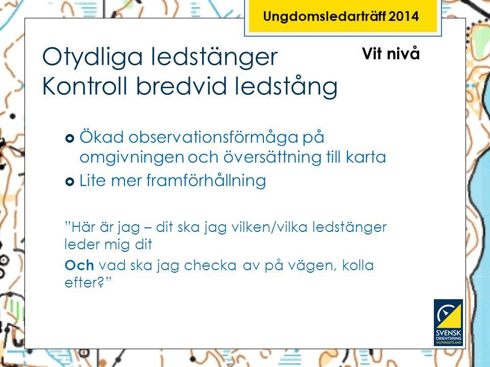 Ungdomsledarträff 2014 Otydliga ledstänger Kontroll bredvid ledstång Vit nivå  Ökad observationsförmåga på omgivningen och översättning till karta 