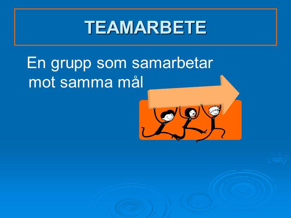 TEAMARBETE En grupp som samarbetar mot samma mål