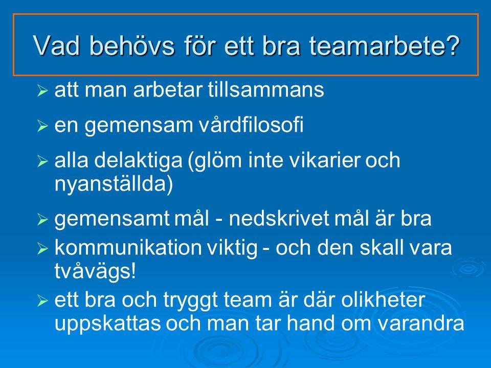 Vad behövs för ett bra teamarbete.