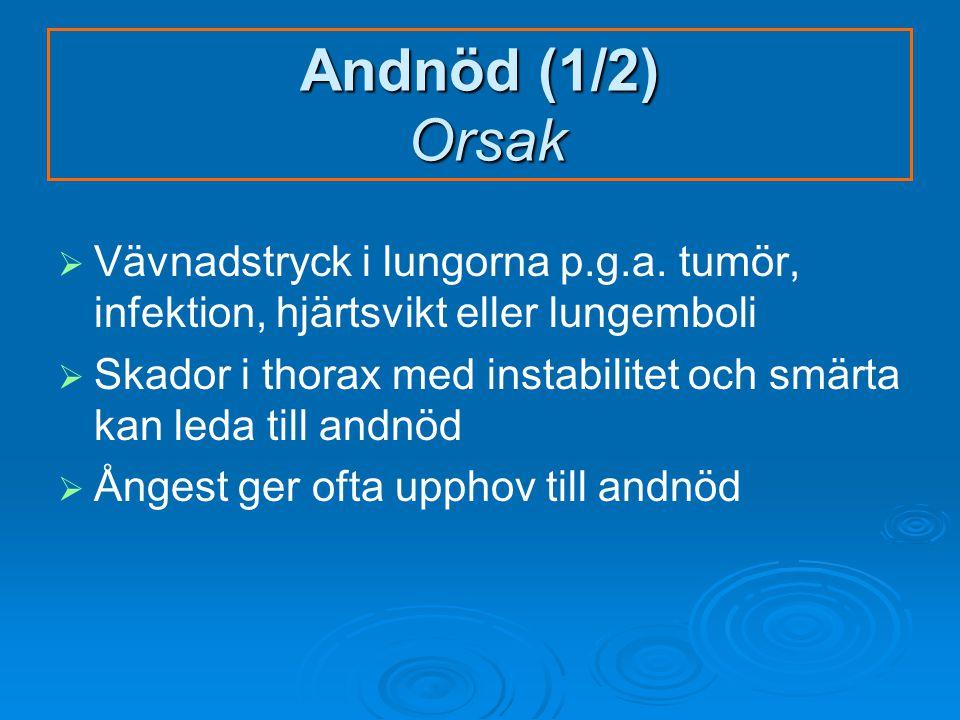 Andnöd (1/2) Orsak   Vävnadstryck i lungorna p.g.a.