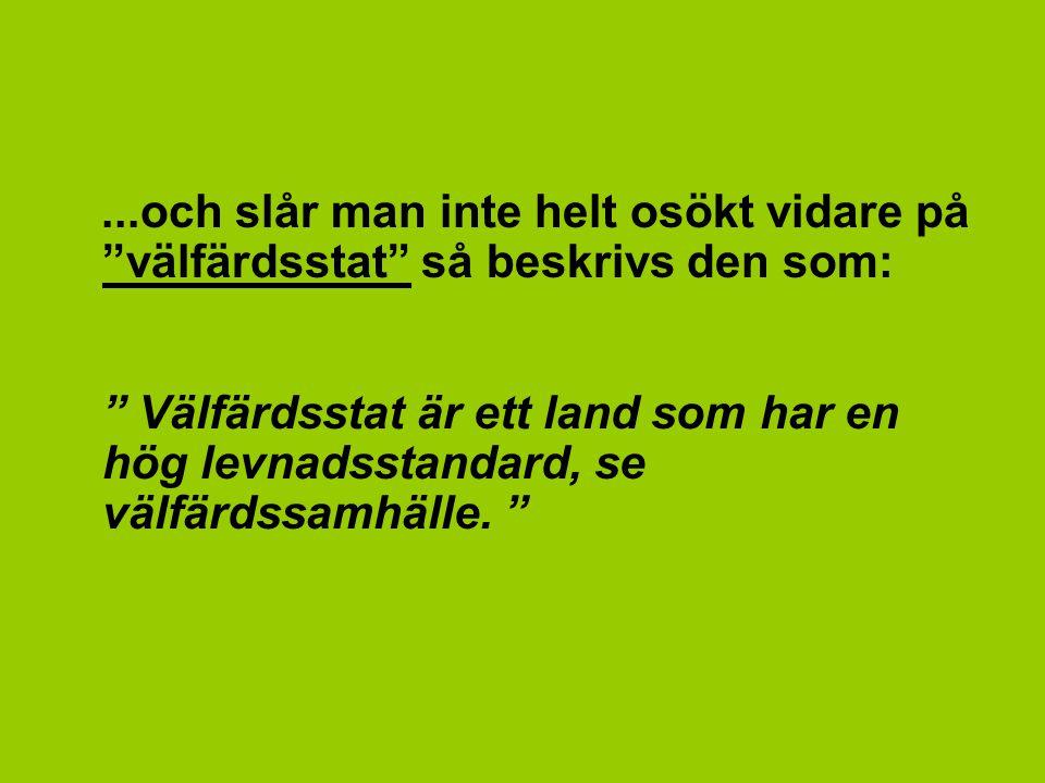 Så, om vi nu fattat detta rätt, så i korthet står begreppet den svenska välfärden för: ett Sverige med en hög levnadsstandard och en samhällig trygghet för medborgarna.