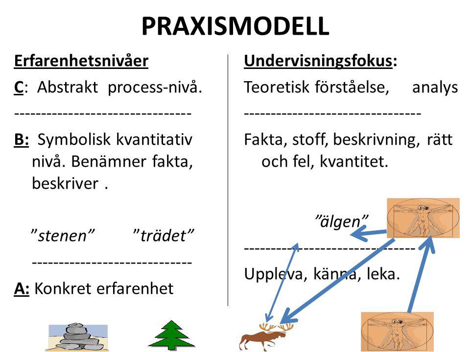 """PRAXISMODELL Erfarenhetsnivåer C: Abstrakt process-nivå. -------------------------------- B: Symbolisk kvantitativ nivå. Benämner fakta, beskriver. """"s"""
