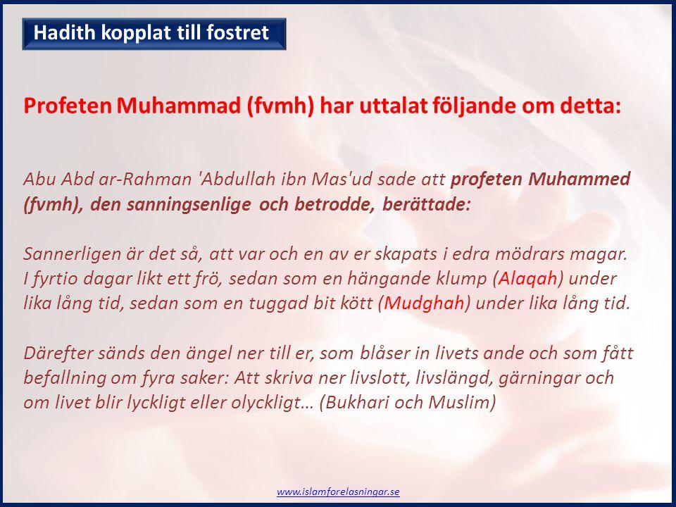 Abu Abd ar-Rahman Abdullah ibn Mas ud sade att profeten Muhammed (fvmh), den sanningsenlige och betrodde, berättade: Sannerligen är det så, att var och en av er skapats i edra mödrars magar.