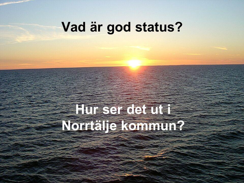 2008-10-09 Vad är god status? Hur ser det ut i Norrtälje kommun?