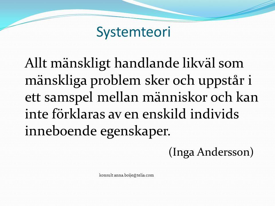 Systemteori Allt mänskligt handlande likväl som mänskliga problem sker och uppstår i ett samspel mellan människor och kan inte förklaras av en enskild individs inneboende egenskaper.