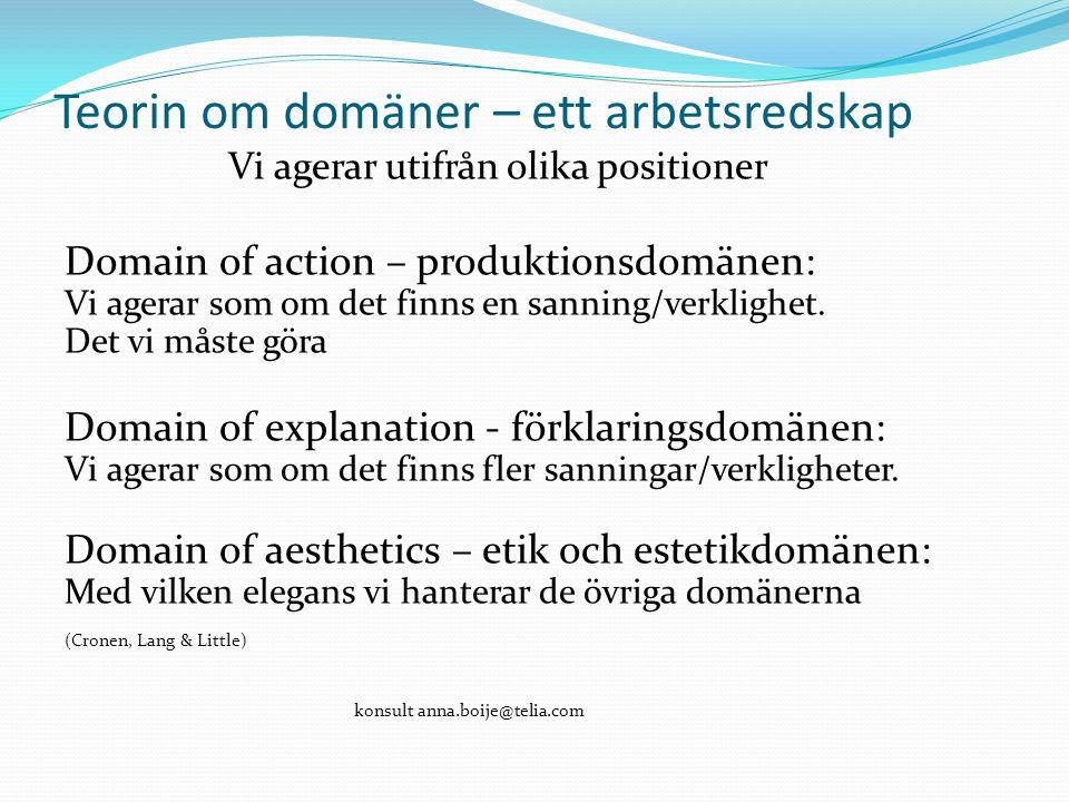 Teorin om domäner – ett arbetsredskap Vi agerar utifrån olika positioner Domain of action – produktionsdomänen: Vi agerar som om det finns en sanning/verklighet.