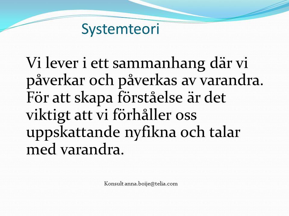Systemteori Vi lever i ett sammanhang där vi påverkar och påverkas av varandra.