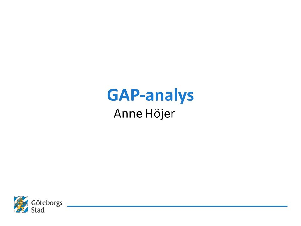 GAP-analys Anne Höjer