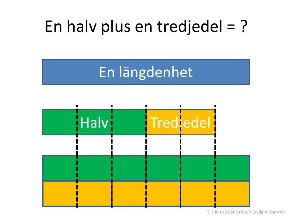 En hel (yta) En halv plus en tredjedel = .