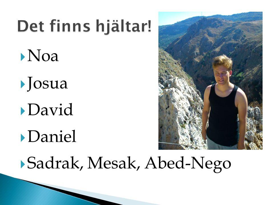  Noa  Josua  David  Daniel  Sadrak, Mesak, Abed-Nego