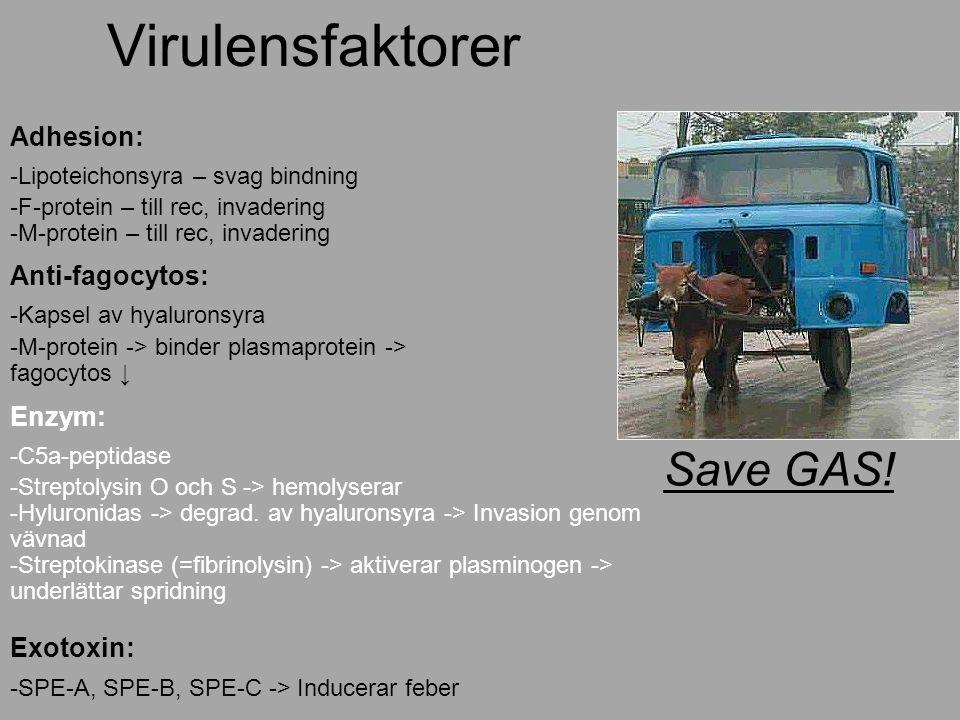 Virulensfaktorer Save GAS.