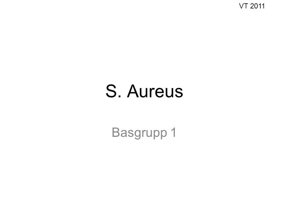 S. Aureus Basgrupp 1 VT 2011