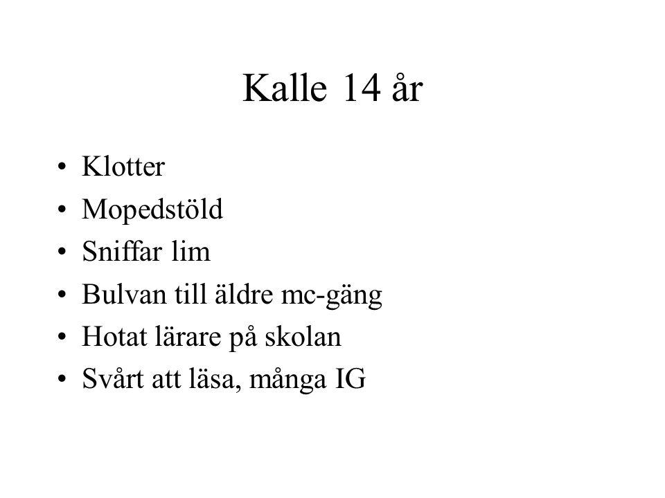 Kalle 14 år Klotter Mopedstöld Sniffar lim Bulvan till äldre mc-gäng Hotat lärare på skolan Svårt att läsa, många IG