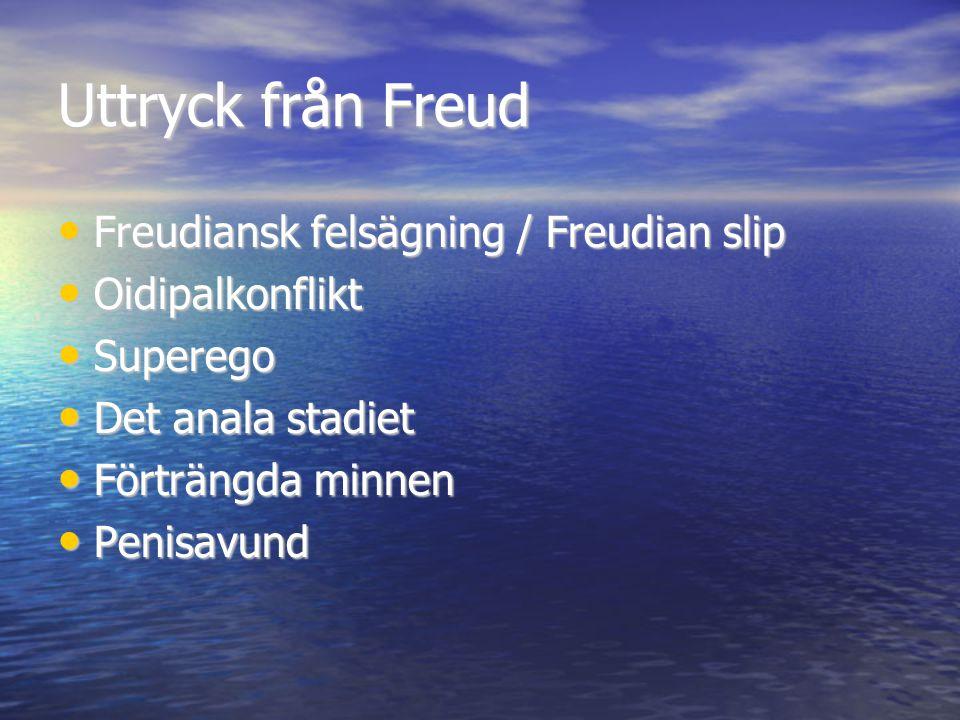 Uttryck från Freud Freudiansk felsägning / Freudian slip Freudiansk felsägning / Freudian slip Oidipalkonflikt Oidipalkonflikt Superego Superego Det a