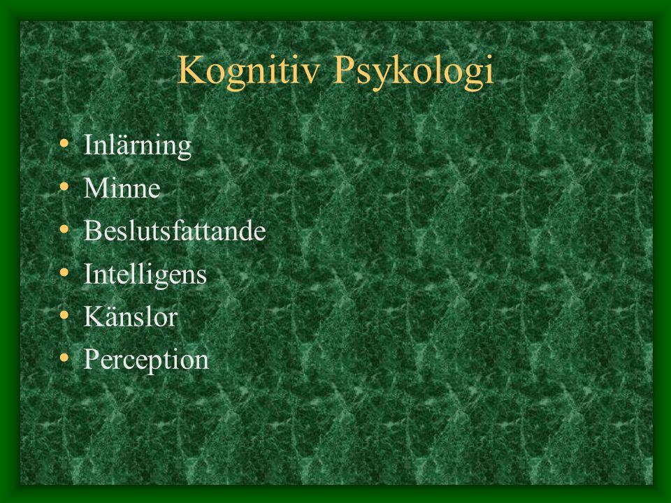 Kognitiv Psykologi Inlärning Minne Beslutsfattande Intelligens Känslor Perception