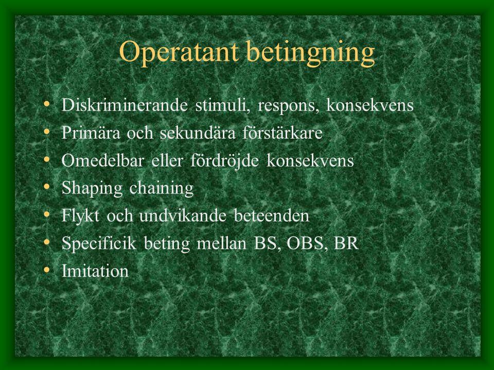 Operatant betingning Diskriminerande stimuli, respons, konsekvens Primära och sekundära förstärkare Omedelbar eller fördröjde konsekvens Shaping chain