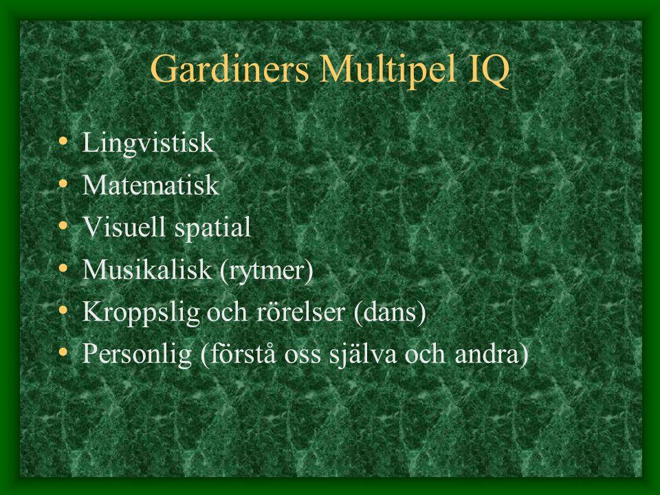 Gardiners Multipel IQ Lingvistisk Matematisk Visuell spatial Musikalisk (rytmer) Kroppslig och rörelser (dans) Personlig (förstå oss själva och andra)