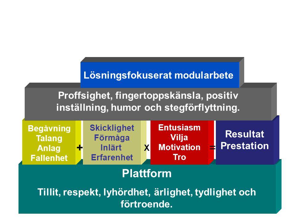 19Göran Larsson Plattform Tillit, respekt, lyhördhet, ärlighet, tydlighet och förtroende. Skicklighet Förmåga Inlärt Erfarenhet Begåvning Talang Anlag