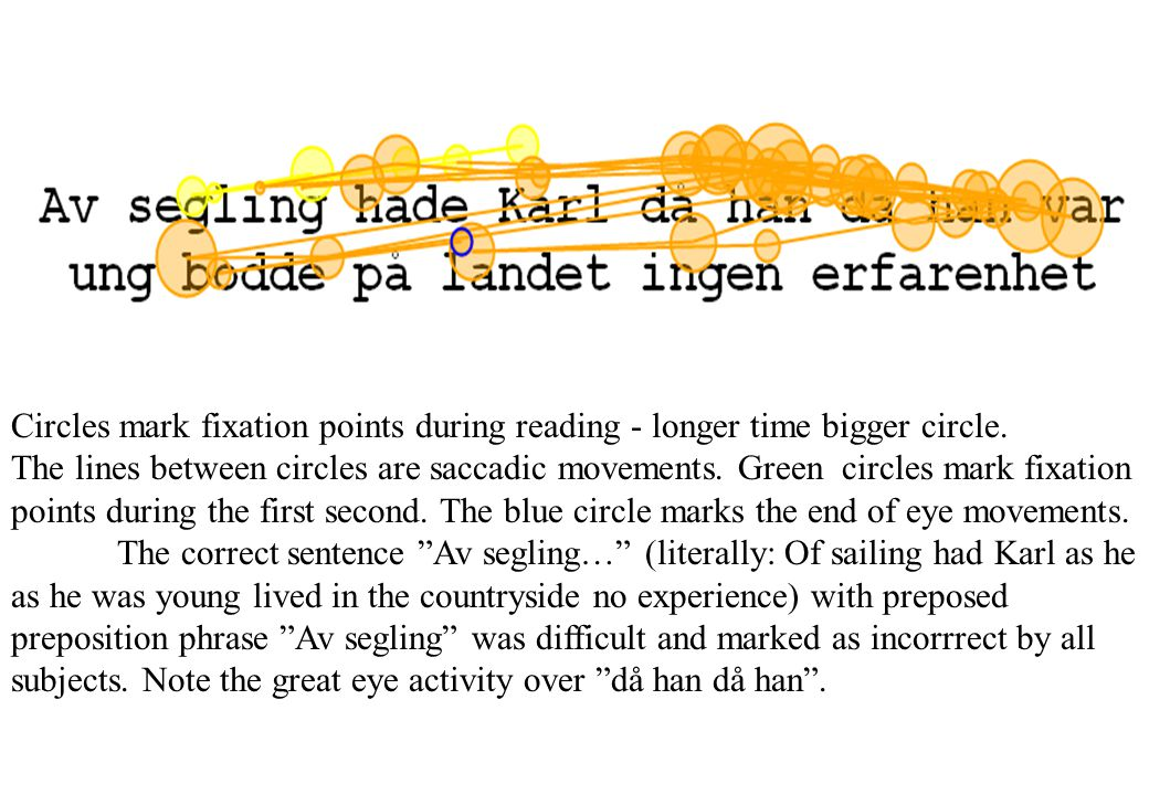 Circles mark fixation points during reading - longer time bigger circle.