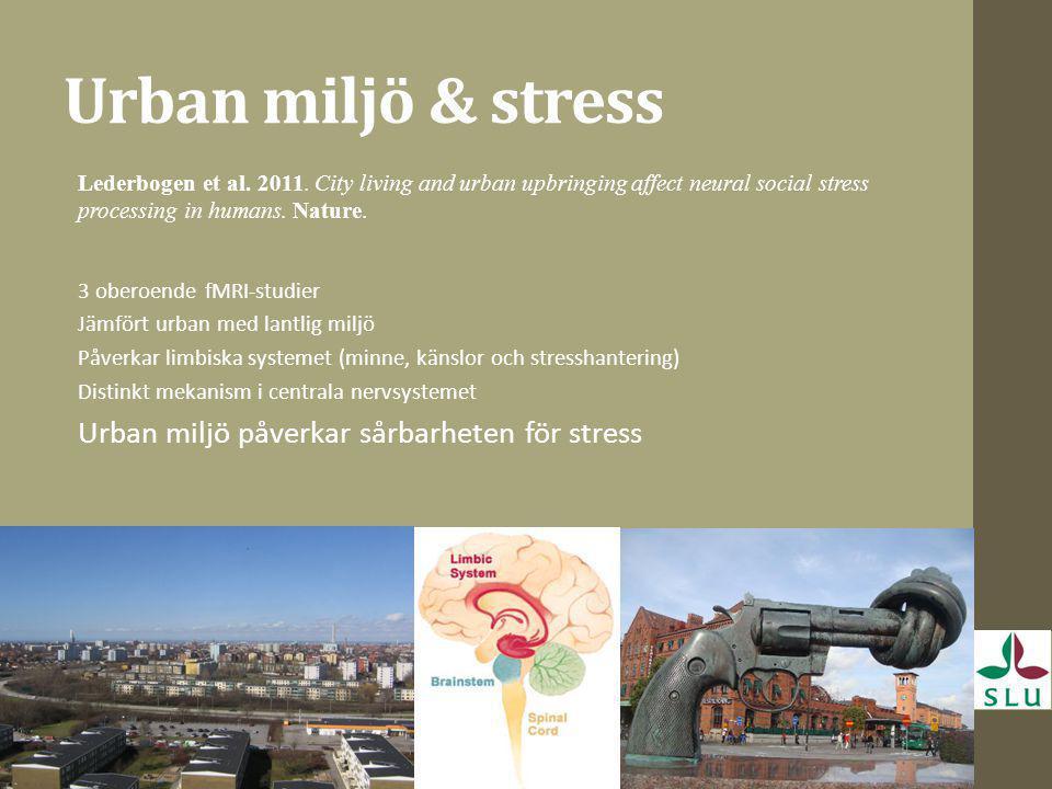 Urban miljö & stress Lederbogen et al. 2011. City living and urban upbringing affect neural social stress processing in humans. Nature. 3 oberoende fM