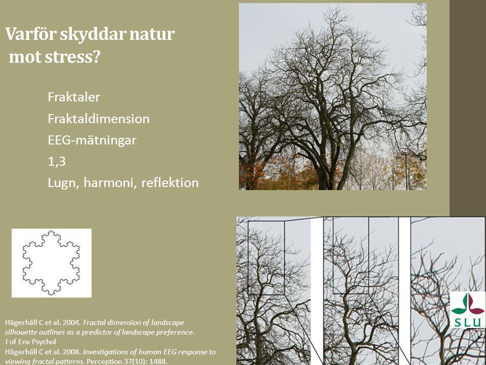 Varför skyddar natur mot stress? Fraktaler Fraktaldimension EEG-mätningar 1,3 Lugn, harmoni, reflektion Hägerhäll C et al. 2004. Fractal dimension of