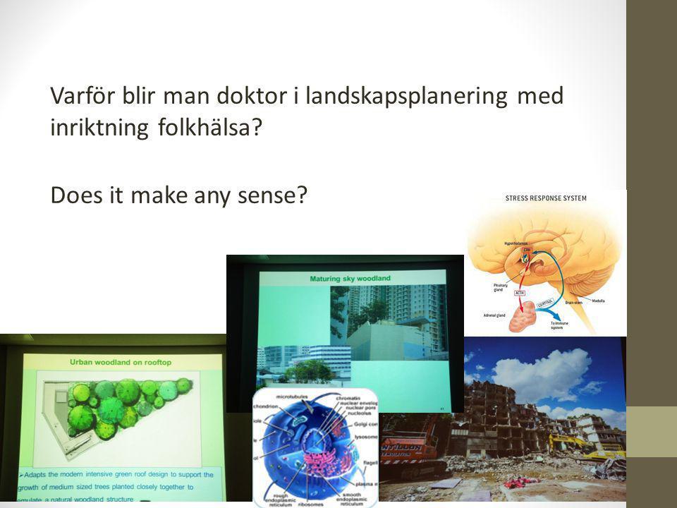 Varför blir man doktor i landskapsplanering med inriktning folkhälsa? Does it make any sense?