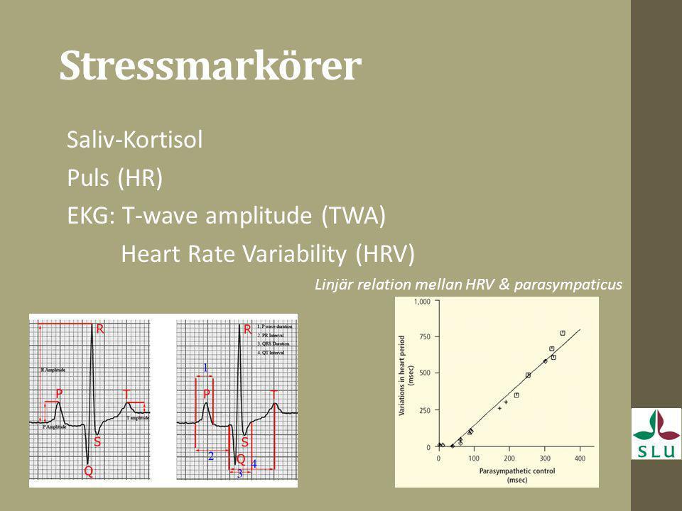 Stressmarkörer Saliv-Kortisol Puls (HR) EKG: T-wave amplitude (TWA) Heart Rate Variability (HRV) Linjär relation mellan HRV & parasympaticus