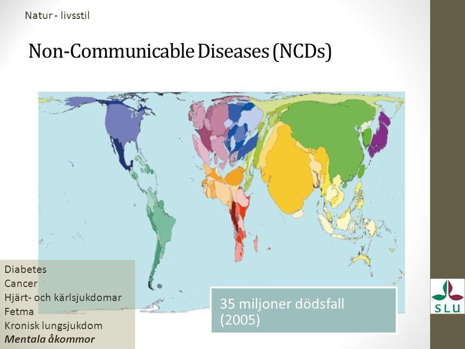 Non-Communicable Diseases (NCDs) Diabetes Cancer Hjärt- och kärlsjukdomar Fetma Kronisk lungsjukdom Mentala åkommor 35 miljoner dödsfall (2005) Natur