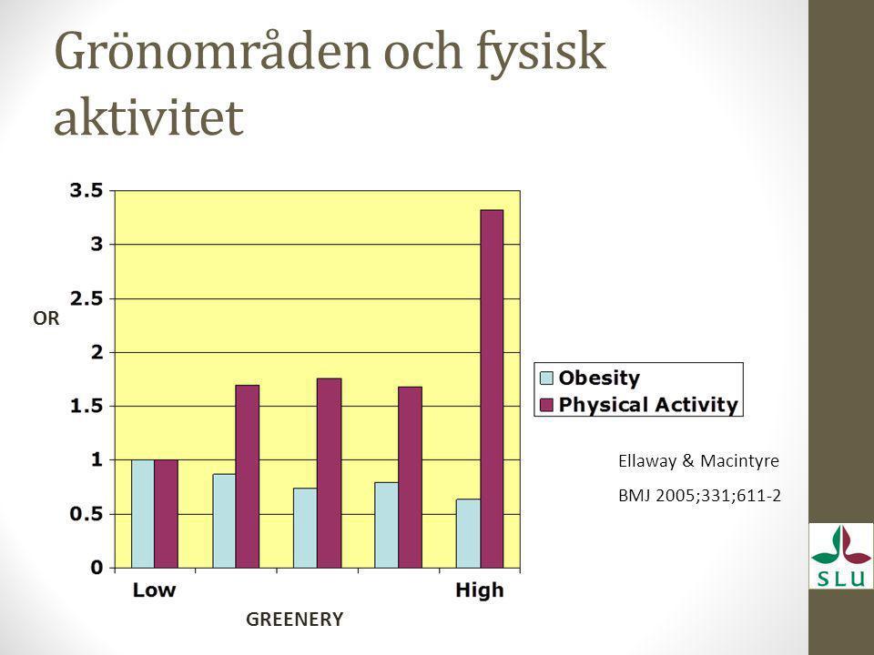 Grönområden och fysisk aktivitet OR GREENERY Ellaway & Macintyre BMJ 2005;331;611-2