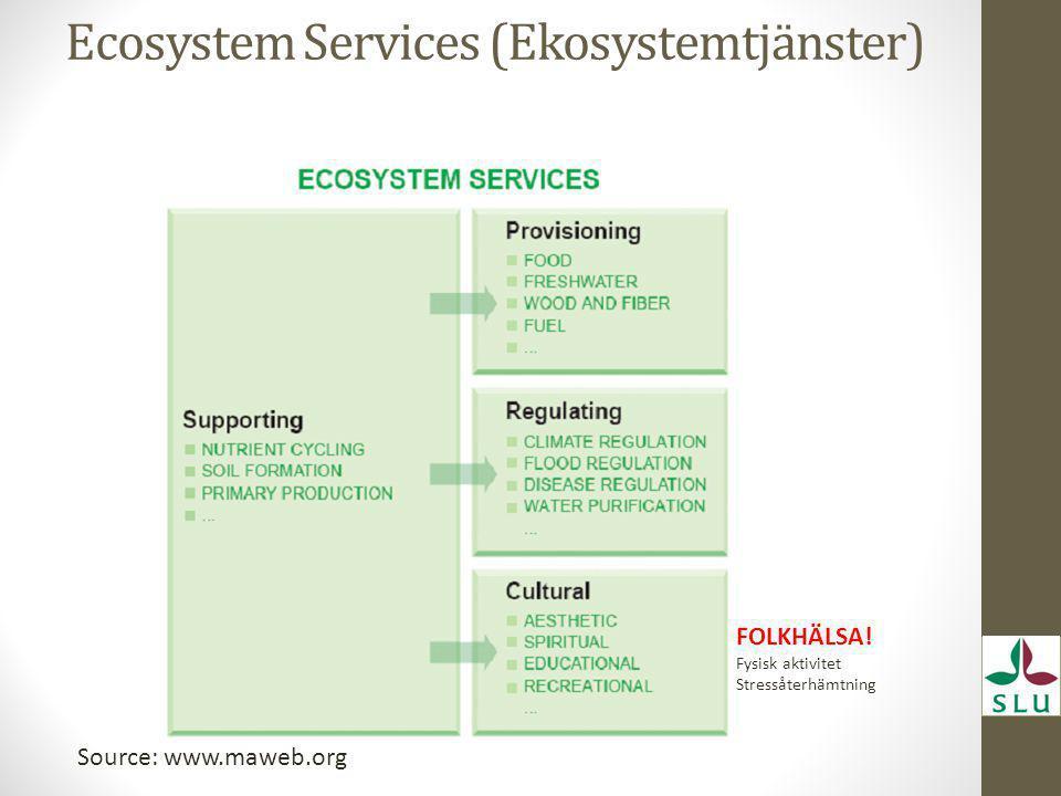 Ecosystem Services (Ekosystemtjänster) FOLKHÄLSA! Fysisk aktivitet Stressåterhämtning Source: www.maweb.org