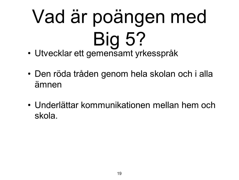 Vad är poängen med Big 5? Utvecklar ett gemensamt yrkesspråk Den röda tråden genom hela skolan och i alla ämnen Underlättar kommunikationen mellan hem