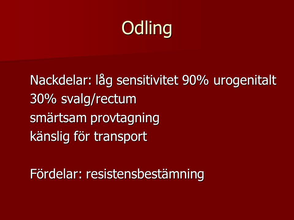 Odling Nackdelar: låg sensitivitet 90% urogenitalt Nackdelar: låg sensitivitet 90% urogenitalt 30% svalg/rectum 30% svalg/rectum smärtsam provtagning