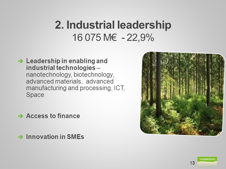 2. Industrial leadership 16 075 M€ - 22,9% 13  Leadership in enabling and industrial technologies – nanotechnology, biotechnology, advanced materials